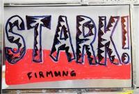Licht_Laterne-Stark-Firmung_WaiteM_8913